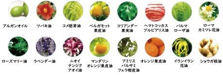 16種類の植物オイル