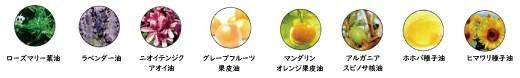 8種類の植物オイル
