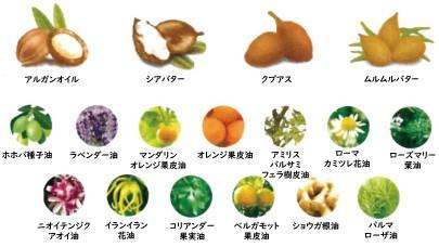 17種類の植物オイル