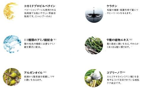 6種類の植物オイル