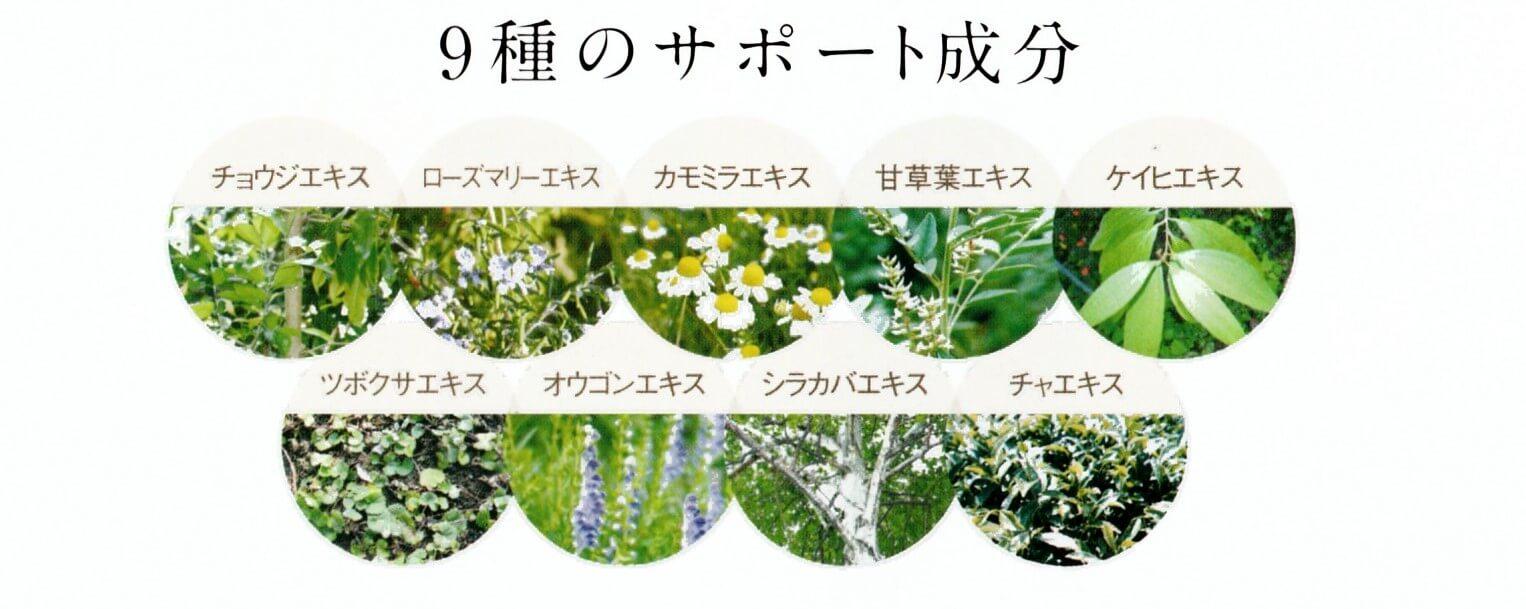 9種の天然サポート成分チョウジエキスローズマリーエキスカモミラエキス甘草葉エキスケイヒエキスツボクサエキスオウゴンエキスシラカバエキスチャエキス